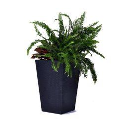 Rattan Planter M virágtartó