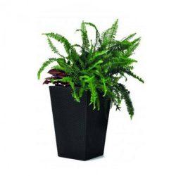 Rattan planter S virágtartó