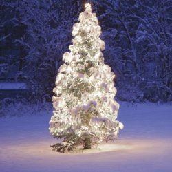 Kontakt LED fényfüzér, hideg fehér színben